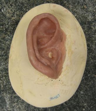 textured-ear.jpg